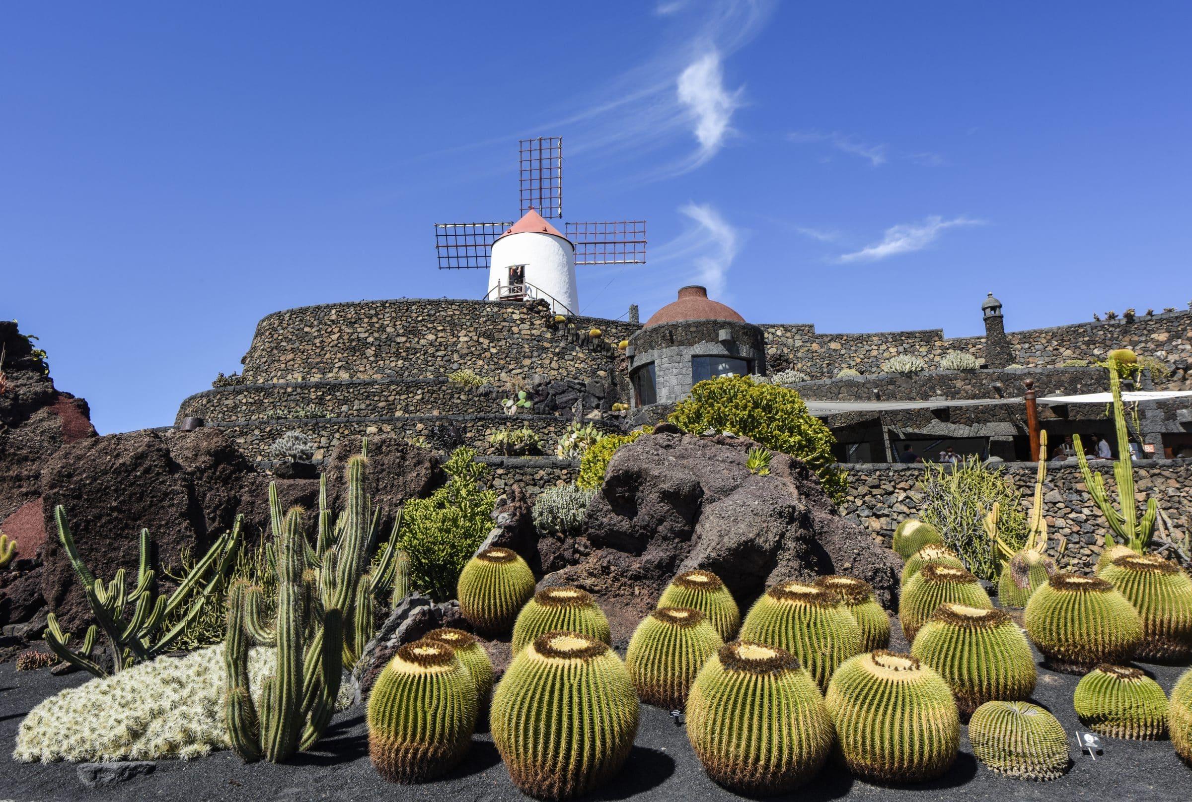 Jardin de cactus for Jardin de cactus lanzarote