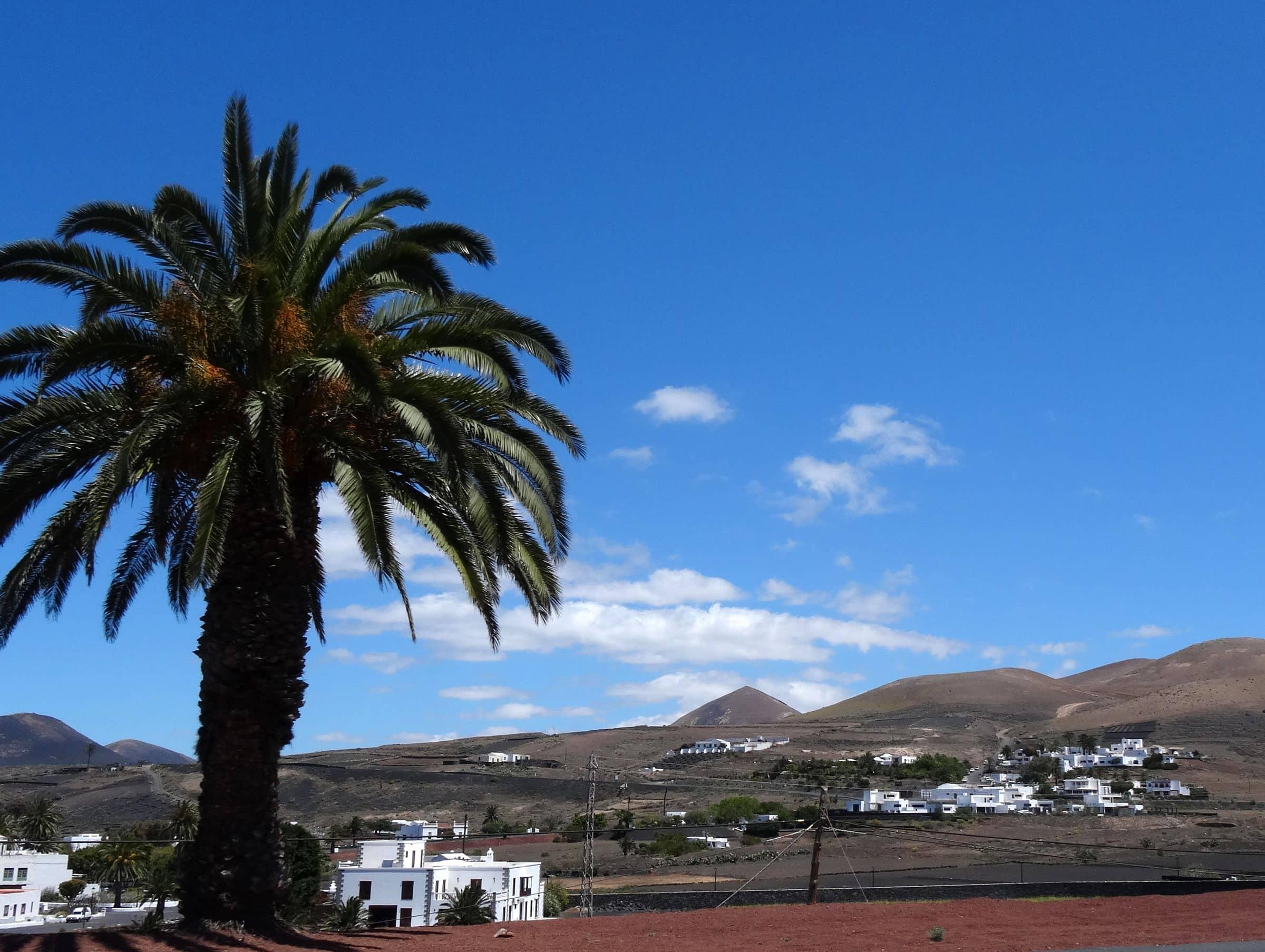 Mácher Lanzarote